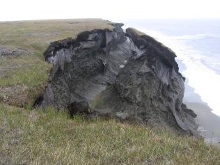BAIS_Bluff_028 Barter Island Coastal Erosion